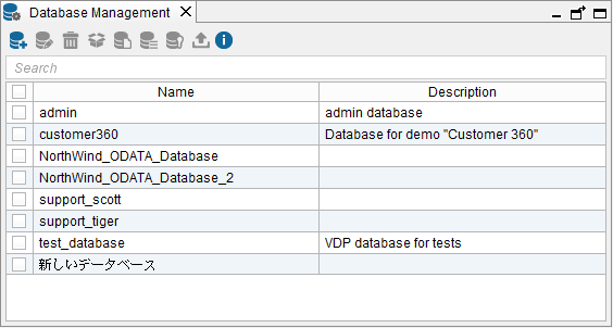 List of existing Virtual DataPort databases