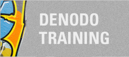 Denodo training